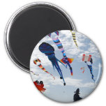 Multi Color Kites Painting the sky Refrigerator Magnet