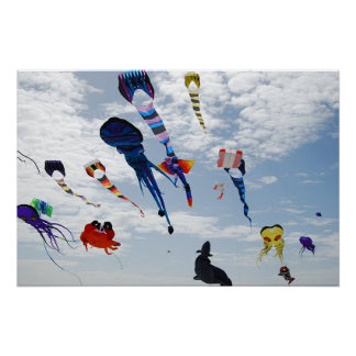 Multi Color Kites Painting the sky Posters