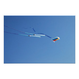 Multi Color Long Tail Kite Poster