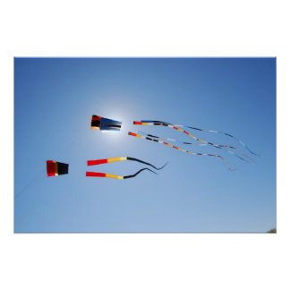 Multi Color Long Tail Kites Posters