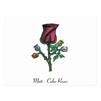 Multi - Color Roses Postcard