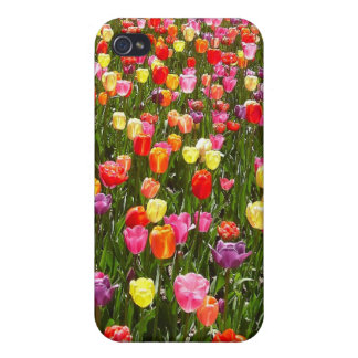 Multi-Color Tulips iPhone 4 Cases