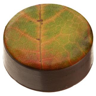 Multi-colored Autumn Leaf Chocolate Covered Oreos