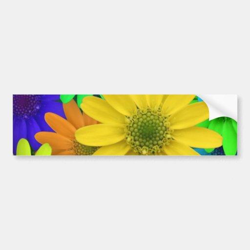 Multi Colored Daisies Bumper Sticker
