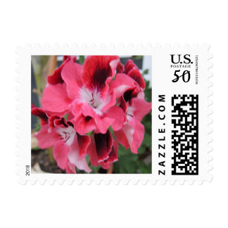 multi colored flower postage