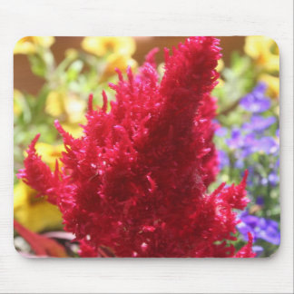 Multi-colored Flowers Mouse Pad