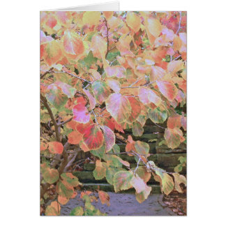 """""""MULTI-COLORED PASTEL COLORED FALL LEAVES"""" CARD"""