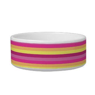 Multi-colored pet bowl. bowl