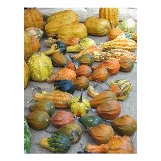 multi colored pumpkins letterhead