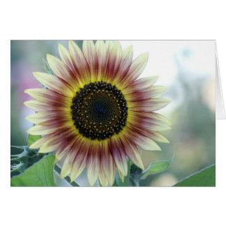 Multi-colored Sunflower Card