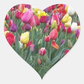 Multi-Colored Tulips in Field Heart Sticker
