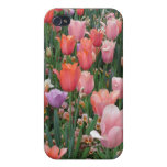 Multi Colored Tulips iPhone 4 Cover