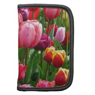 Multi-colored Tulips Organizer