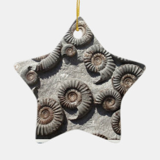 Multi fossil ammonites from the Lower Lias Double-Sided Star Ceramic Christmas Ornament