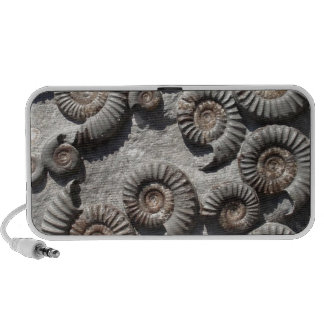 Multi fossil ammonites from the Lower Lias Portable Speaker