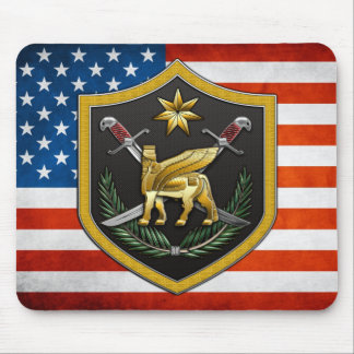 Multi-National Force – Iraq Mouse Pads