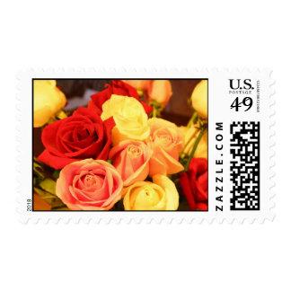 Multi Roses Stamp