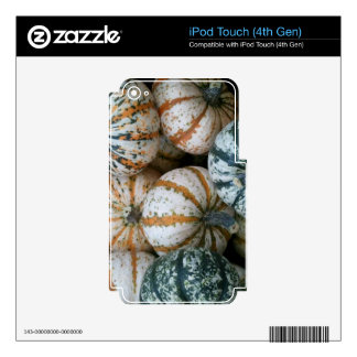 Multicolor Autumn Harvest Pumpkins Decal For iPod Touch 4G