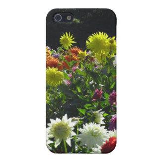 MultiColor Dalia Flowers iPhone SE/5/5s Cover
