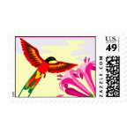 Multicolor hummingbird with flower stamps