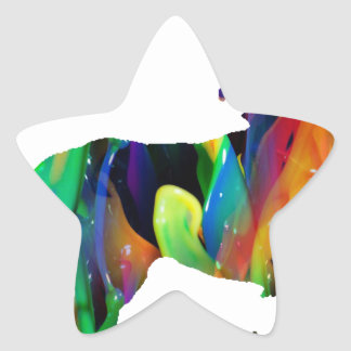 MULTICOLOR LEON PRODUCTS STAR STICKERS
