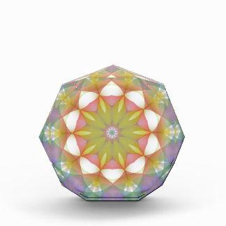 Multicolor Scalloped Flower Kaleidoscope Award