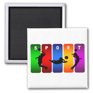 Multicolor Volleyball Emblem Magnet