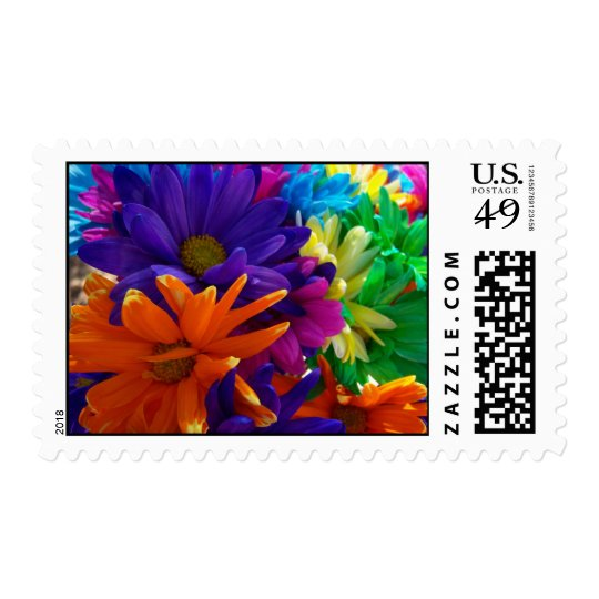 Multicolored Daises Postage Stamp