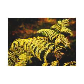 multicolored fern in the autumn, close-up, canvas print