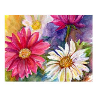 Multicolored Gerbera Daisies Postcard