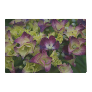 Multicolored Hydrangeas Placemat