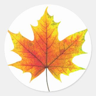 Multicolored maple leaf classic round sticker