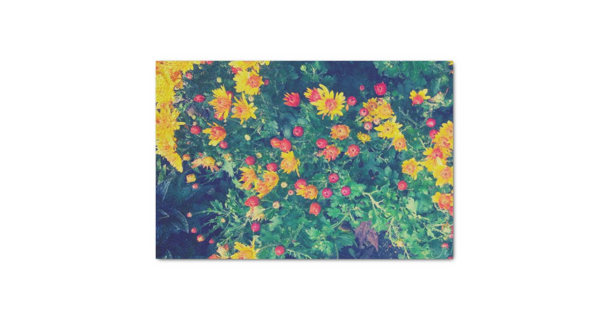 Multicolored meadow whimsical wild daisy flowers tissue paper ...