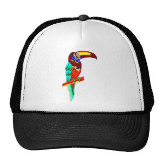 Multicolored parrot graphic mesh hat