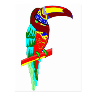 Multicolored parrot graphic post cards