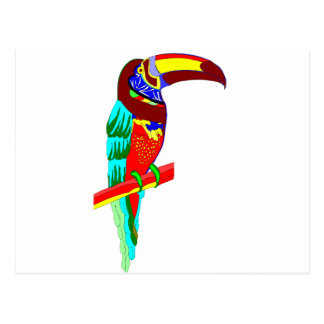 Multicolored parrot graphic postcard
