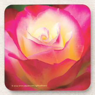 Multicolored Rose - Set of 6 Coasters