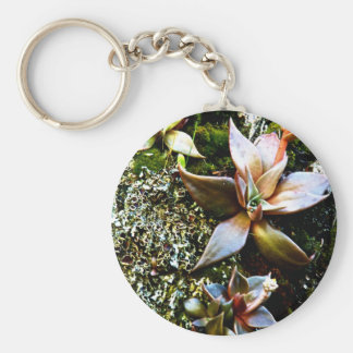 MULTICOLORED SUCCULENTS BASIC ROUND BUTTON KEYCHAIN