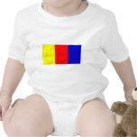 Multicolored Terrier Tshirt