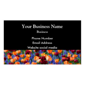 Multicolored tulip floral flower on black business card