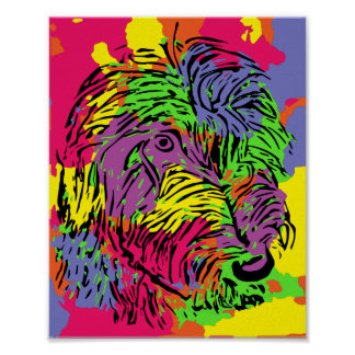 Multicoloured dog poster