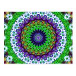 Multicoloured Floral Kaleidoscope Mandala Postcard
