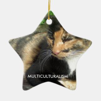Multiculturalism Cat Ceramic Ornament