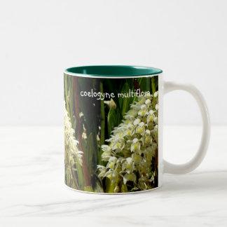 multiflora lindo del coelogyne de la taza 15oz