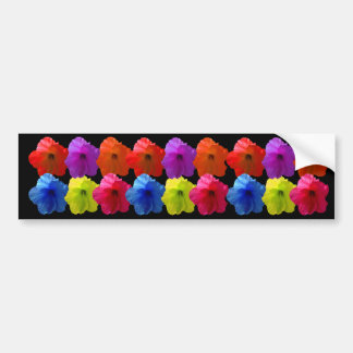 Multiple Colored Hibiscus Flowers Bumper Sticker