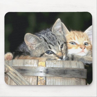 Multiple Kitty Cat Products Mouse Pad
