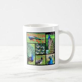Multiple photos Indian peafowls Coffee Mugs