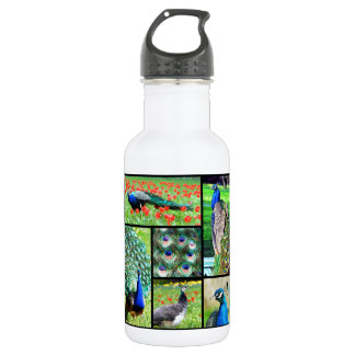 Multiple photos Indian peafowls Stainless Steel Water Bottle
