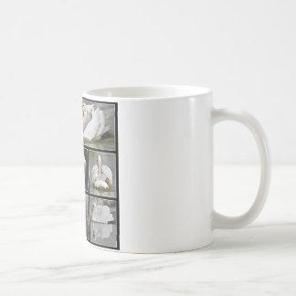 Multiple photos mosaic of mute swans coffee mug