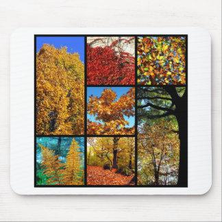 Multiple photos of autumn foliage mouse pad